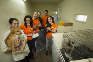 02 - GO Cares Employee Fund supports animal sanctuaries - AAA - 2