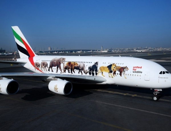 84 – Emirates' super jumbo message against the illegal wildlife trade – 2
