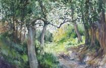 Trees of life – Jeni Caruana exhibition
