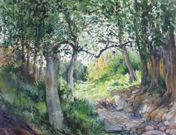 trees-at-tamena-gozo