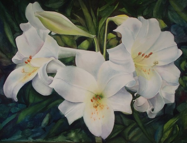 Mona Vella Lilies watercolours