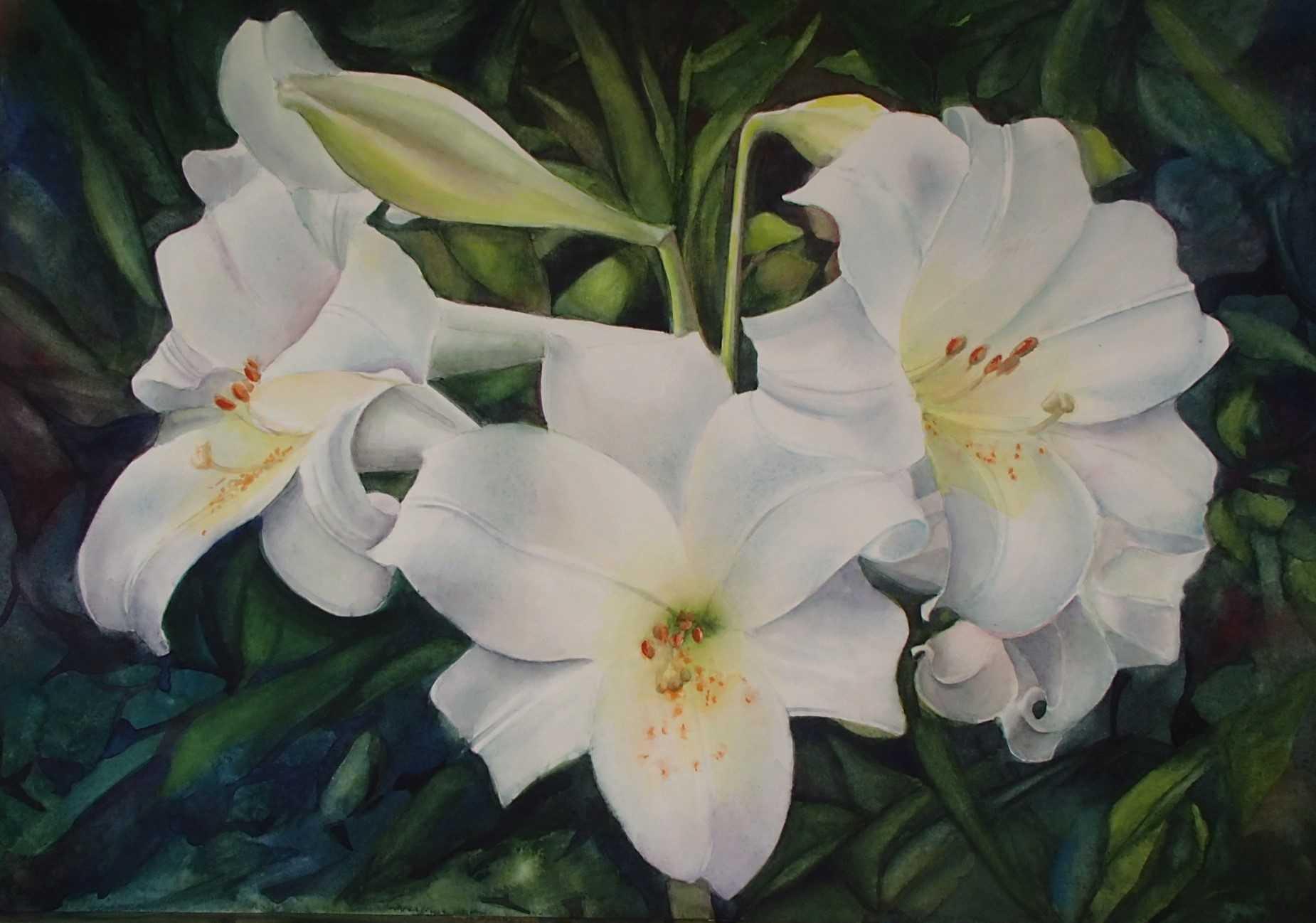 Mona Vella Lilies watercolours