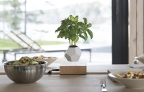 WILD life – levitating plant pots