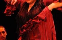 Pure flamenco at the Manoel