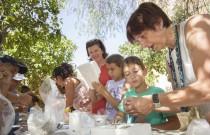 Summer camp education