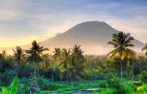 Bali every day, courtesy of Emirates